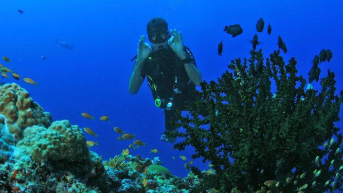Scuba diving Maldives