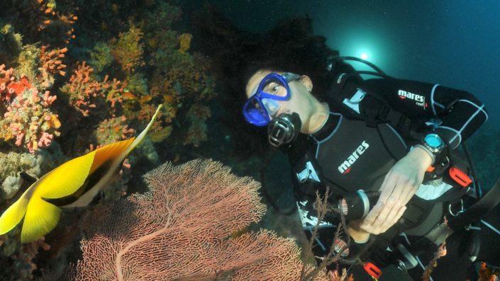 Scuba Diving Maldives Night
