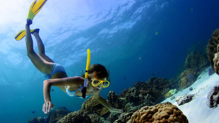 Discover the reefs by snorkelling