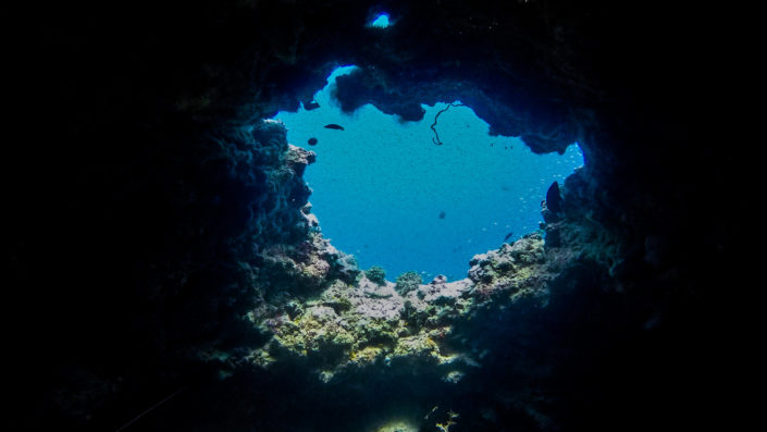 Baa Atoll Maldives Snorkelling