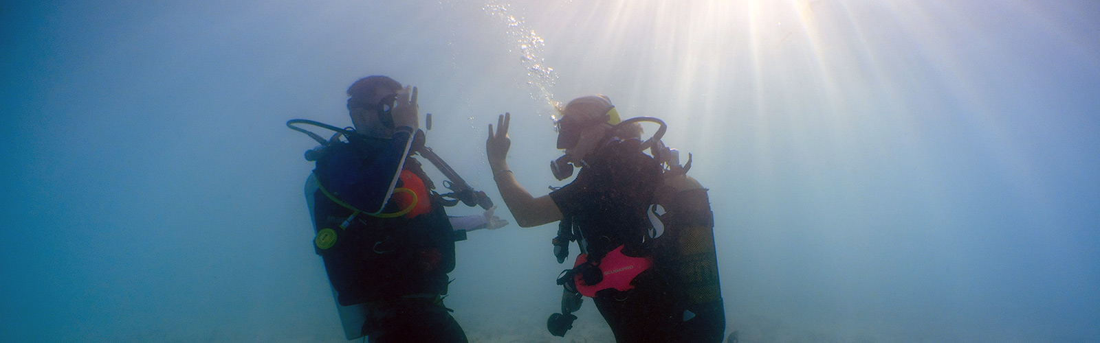 Maldives Scuba Diving Beginners