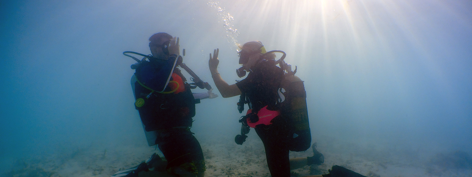 Maldives Scuba Diving Beginners