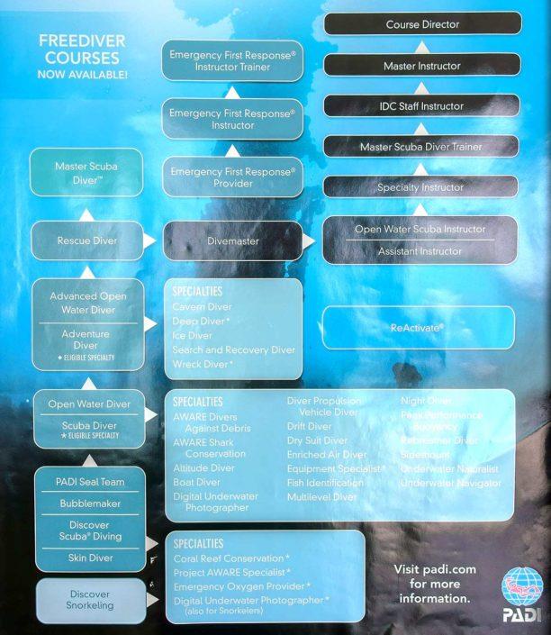 PADI Scuba Diving Courses Maldives