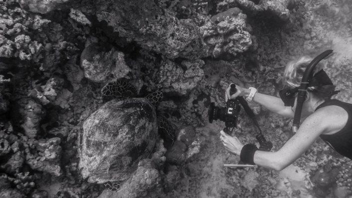Maldives Photography Video Service